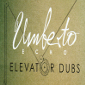 Umberto Echo - Elevator Dubs