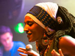 Reggae Articles: Mo'Kalamity and The Wizards in Paris