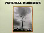 Reggae Articles: Natural Numbers - Natural Numbers in Dub