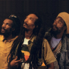 Israel Vibration photo