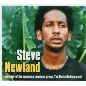 Steve Newland - Steve Newland