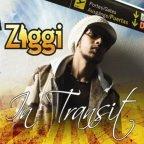 Ziggi Recado - In Transit