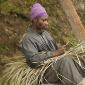 A La Jamaique - Bobo Shanti Broom
