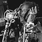 Lee 'Scratch' Perry - The Black Album