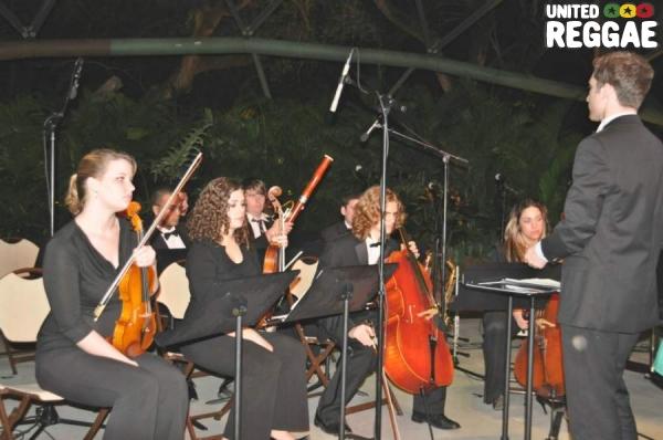 Orchestra © Gail Zucker