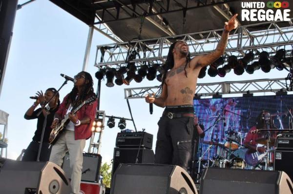 New Kingston Band © Gail Zucker