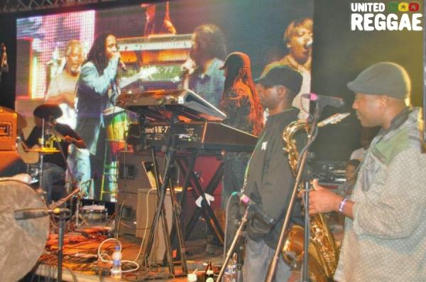 Marleys backing band © Gail Zucker