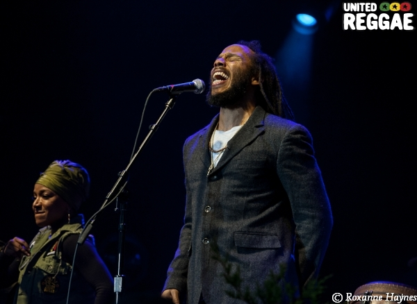 California Roots Music and Arts Festival 2014 © Roxanne Haynes