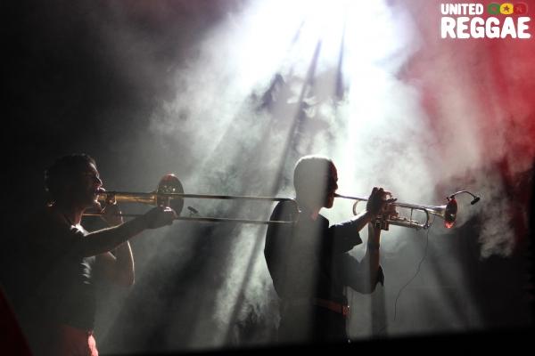 Trumpeters © Veronique Skelsey