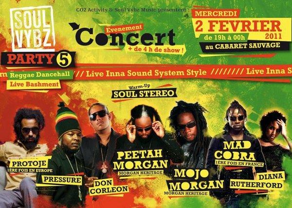 Soul Vybz Party 5 flyer