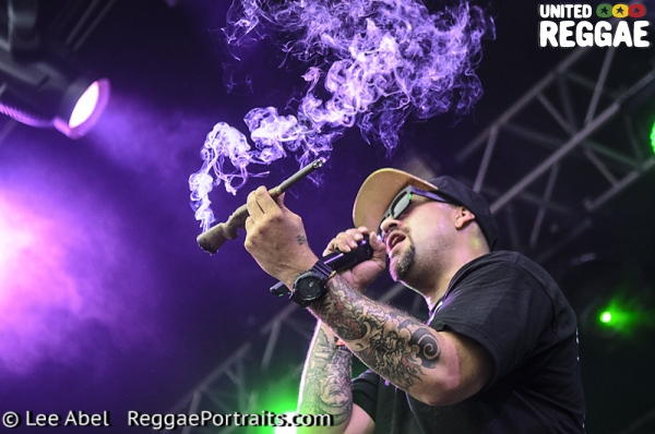 Cypress Hill © Lee Abel