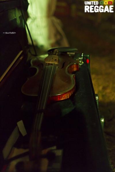 Violin © Roots Elf