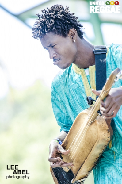 Bassekou Kouyate & Ngoni Ba © Lee Abel