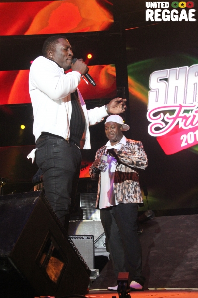 Pliers and Chaka Demus © Steve James