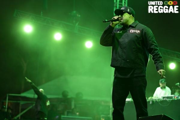 Cypress Hill © Chris Yates