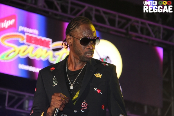 Reggae Sumfest 2018 - Dancehall Night, Bounty Killer © Steve James