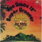 Joe Gibbs - 12