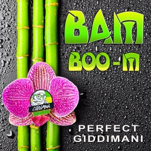 Perfect Giddimani - Bamboo-M