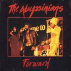 Abyssinians - Forward