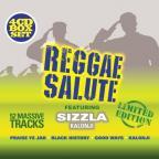 Sizzla - Reggae Salute