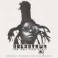 Dreadtown about Steel Pulse