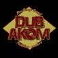 Vitamin Riddim on Akom Records